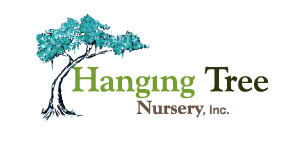 Hanging Tree Nursery