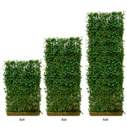 Green Living Fences